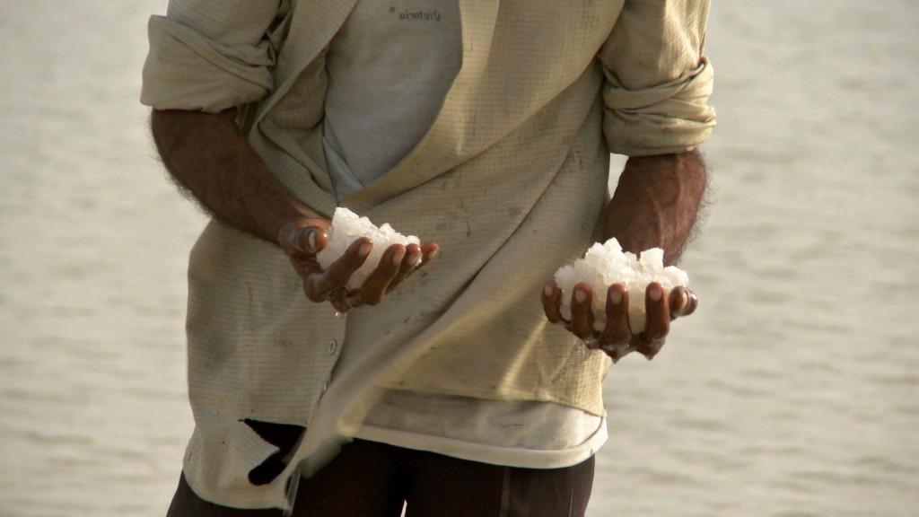 MY_NAME_IS_SALT_Salt_new copy